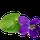Feuille de Violette