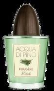 Acqua di Pino Fougère