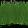 Herbe Verte