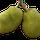 Pomme de Jacque