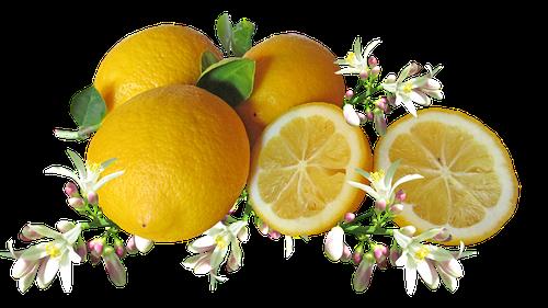 Agrumes et Notes Florales en parfumerie