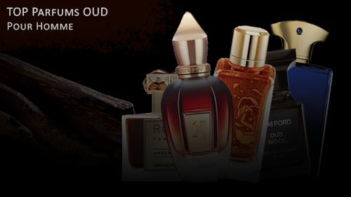 Parfum bois de oud, sélection des meilleures fragrances à l'oud